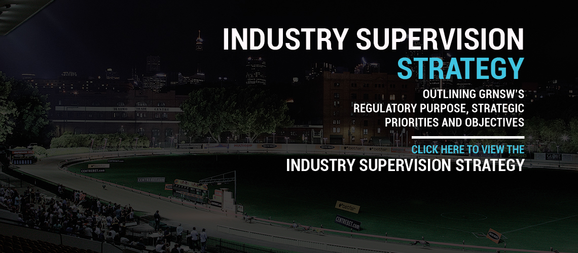 Industry Supervision Strategy
