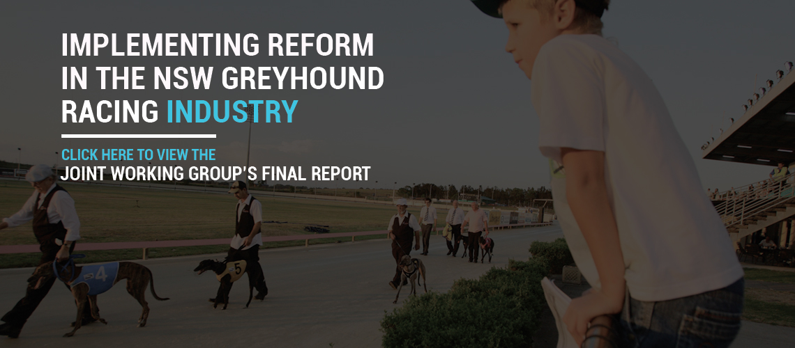 Joint Working Group's Final Report