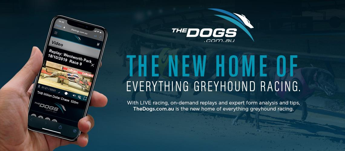 The New Home of Greyhound Racing.