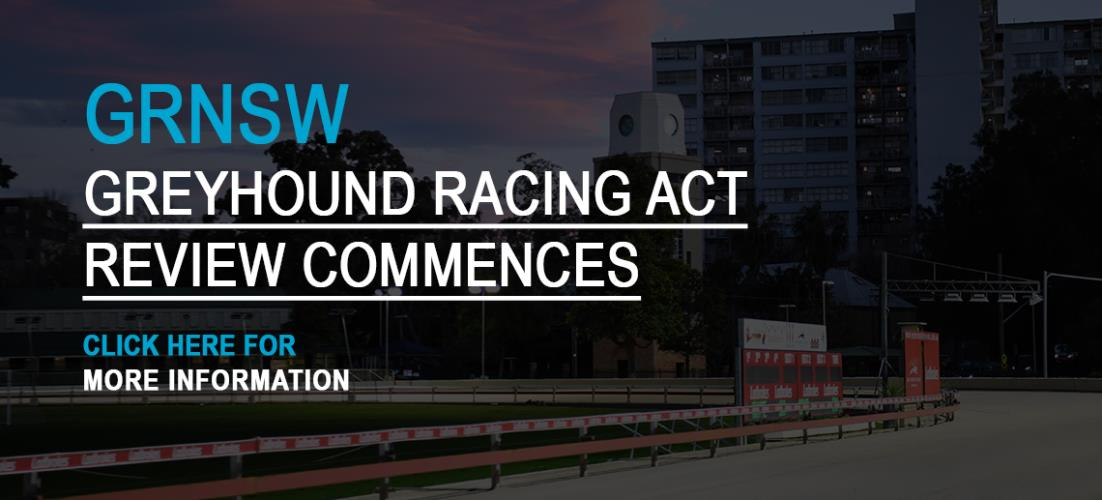 Greyhound Racing Act Review Commences