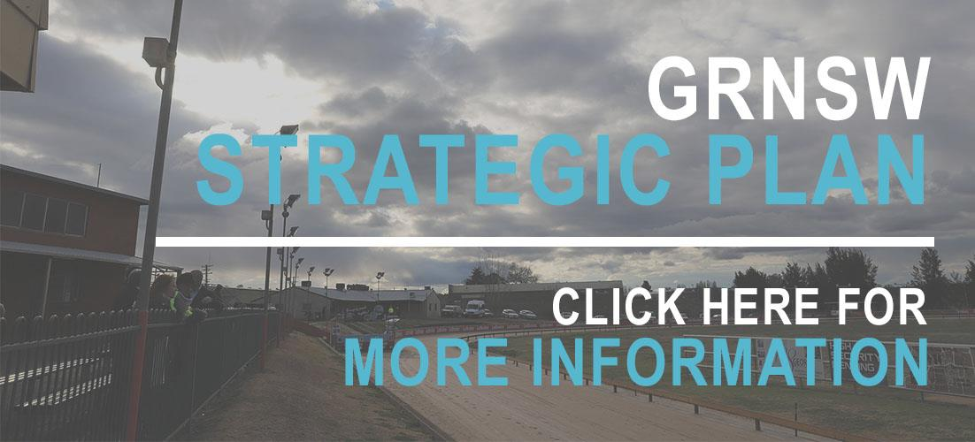2018 GRNSW Strategic Plan